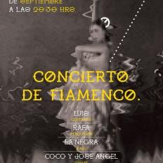 flamenc2o