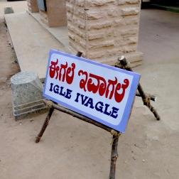 igle ivagle2